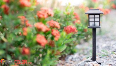 انارة حدائق منزلية
